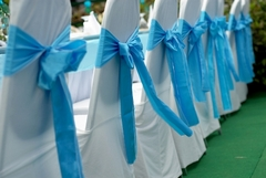 White Blue Chair Cover.jpg